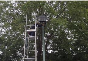 スポーツ施設LED化プロジェクト
